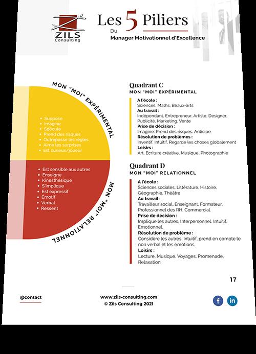 ebook Les 5 piliers du Management Motivationnel d'Excellence